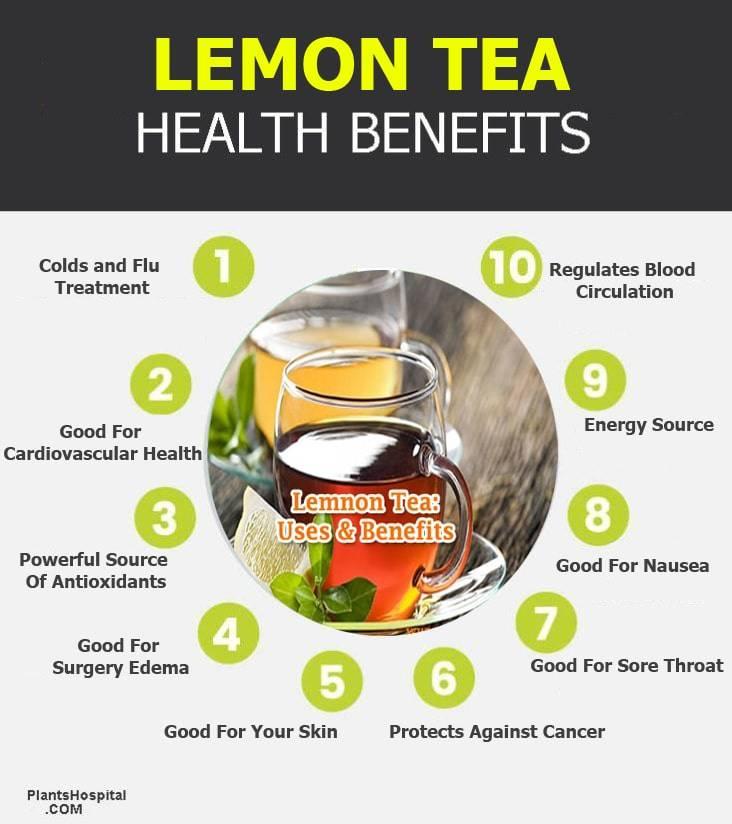 lemon-tea-infographic