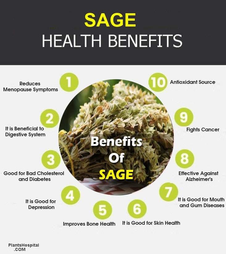 sage-infographic