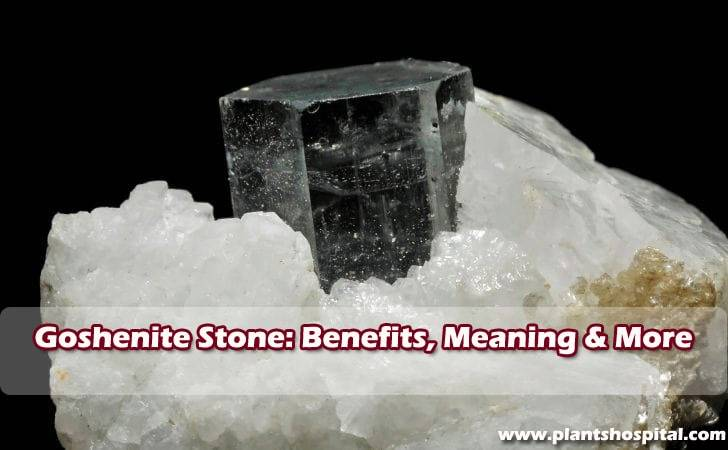 goshenite-stone-benefits
