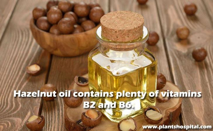 Hazelnut oil contains plenty of vitamins B2 and B6