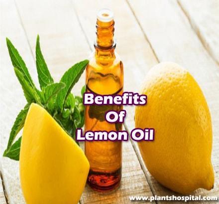 lemon-oil-benefits